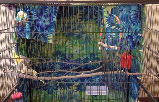 Cage bedrooms snip 2015