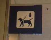 Airport Dog Run1