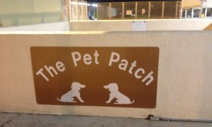 Pet Patch Skyharbor